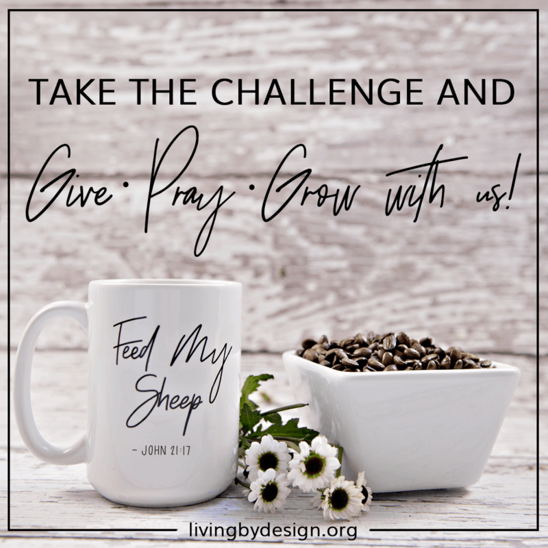 Take the Support Team Challenge and Give Pray Grow with Living by Design Ministres