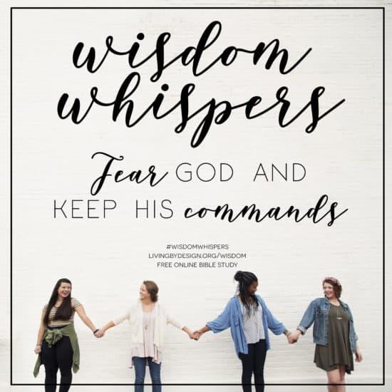 7 Reasons To Study King Solomon Free Bible Study For Women