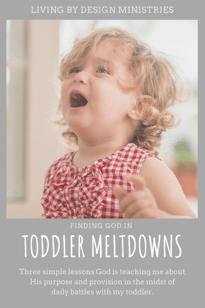 """Maybe you aren't struggling with toddler meltdowns, but a teenager. Maybe you are struggling with the everyday silence you once wished for. Whatever your everyday struggles look like—you aren't alone. I encourage you to bring God a million """"help me"""" prayers in your everyday life. Ask Him to remind you of His nearness and goodness. Challenge yourself to look for His provision, even when you are tempted to wallow in despair. #motherhood #toddler #christian"""