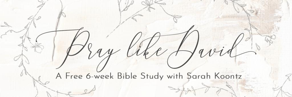 "Sarah Koontz invites you to join us for ""Pray Like David,"" a free summer Bible study exploring the life and prayers of King David."