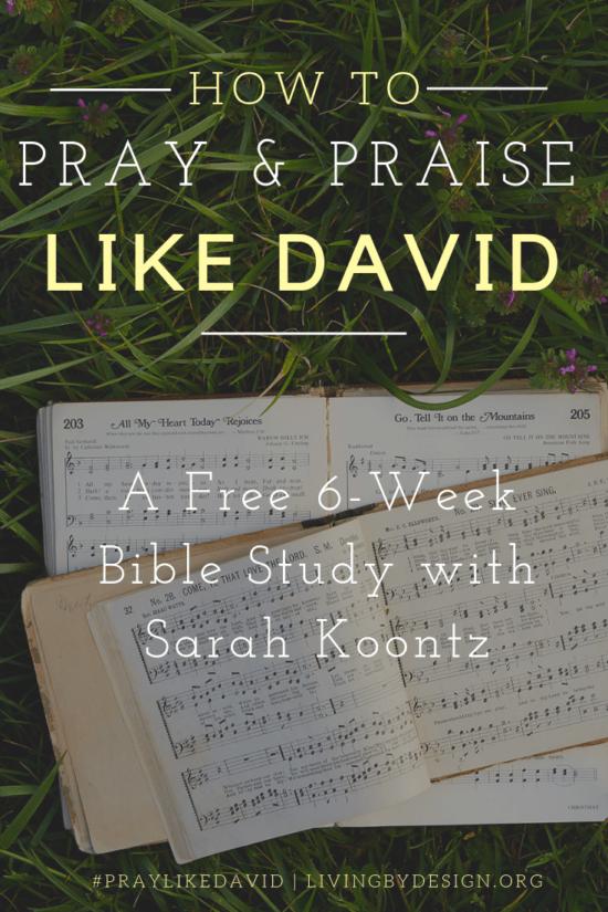 Pray Like David   Free 6-Week Bible Study {and Giveaway!}