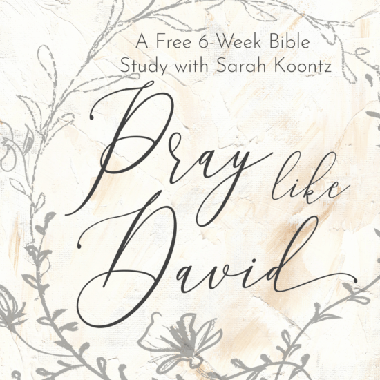 Living by Design Ministries with Sarah Koontz | Free Bible
