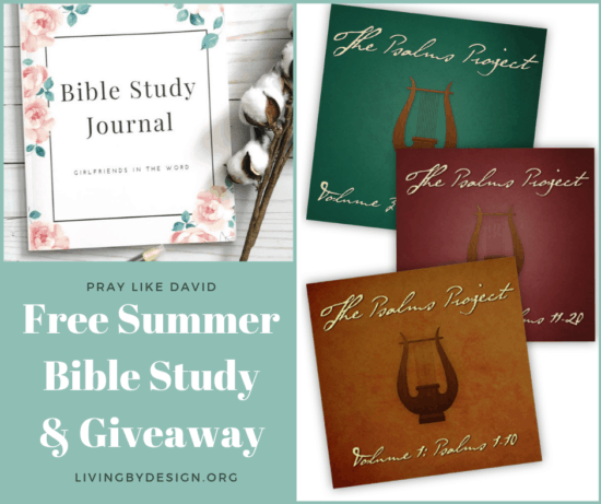 How to Praise & Pray Like David, A Free 6-Week Bible Study, Sign up Today!