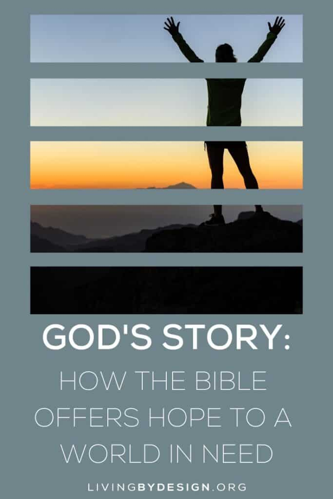 It gives me great hope that we serve a God who will not give up on us, no matter how many times we fail to understand and live out the purpose for which He has created us.  | God's Story: How the Bible Offers Hope to a World in Need