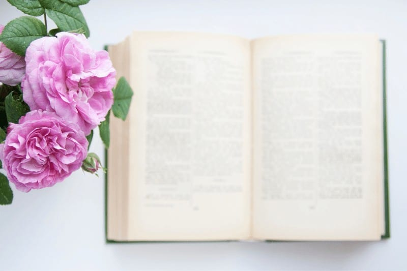 open bible with roses | tips for a successful quiet time with God
