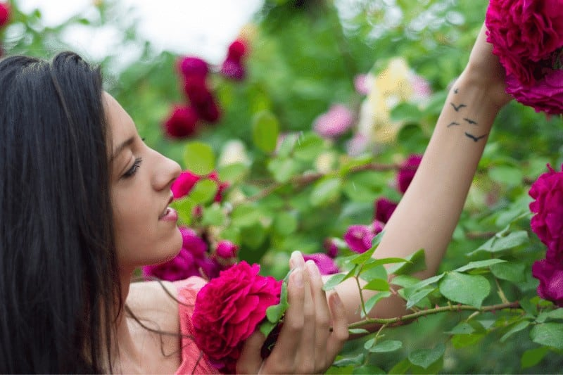 woman in rose garden enjoying the beautiful pink roses | tips for a successful quiet time with God