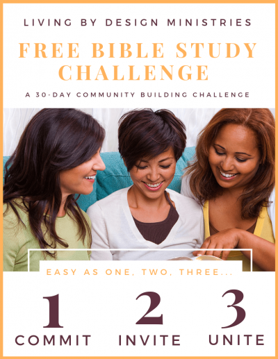 bible study challenge pinnable