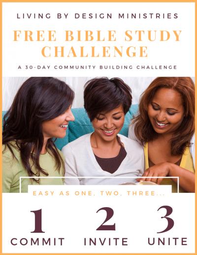 bible study challenge pinnable